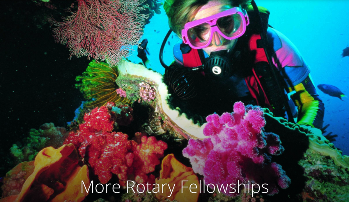 Find Fun Fellowships through Rotary